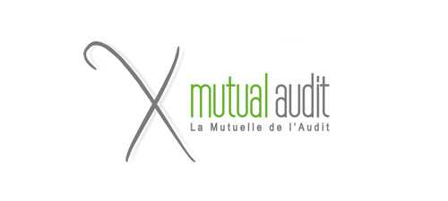 mutual audit